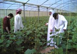 AgraME, UN collaborate to adopt SDGs to increase food security