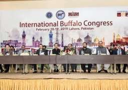 Punjab CM inaugurates International Buffalo Congress and Sino-Pak Buffalo Research Centre , Usman Buzdar says govt promoting livestock sector on scientific lines