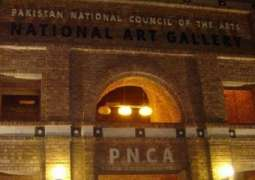 Pakistan Art to get representation at Venice Biennale for first time