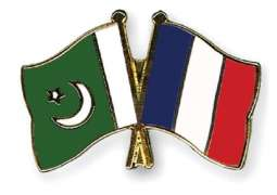 France eyes Pakistan potential market for trade and investment