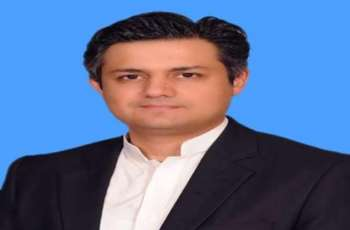 Friendly countries provided financial assistance due to PM's credibility: Hammad Azhar