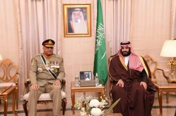 Mohammed bin Salman meets Saudi crown prince
