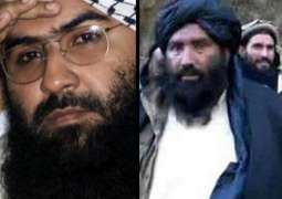 Brother of Jaish-e-Mohammad Group Leader Detained in Pakistan - Interior Ministry