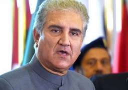 Revitalization of national economy Govt's top priority: Foreign Minister Shah Mahmood Qureshi