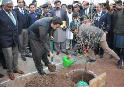 Spring plantation kicks off at NUST; Minister of State for Interior inaugurates drive by planting Olive tree
