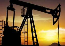 Discovered oil and gas reserves to be sufficient for 100 years: Sabir Shakir