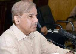 Shehbaz Sharif demands Govt to withdraw decision of petroleum prices hike