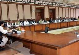 Federal cabinet approves creation of Social Protection and Poverty Alleviation Division (with more details)