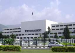Senate Standing Committee on Power held at Parliament House