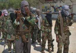 Senior Commander of IS-Linked Somalian Terrorist Group Killed in Airstrike - Reports