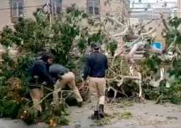 Female SHO removes trees after dust storm in Karachi