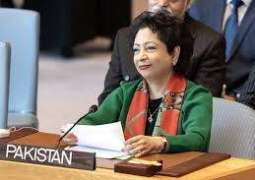 Maleeha Lodhi calls for gearing up efforts for the protection  of women in conflicts
