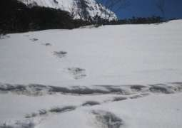 Indian Army claims to find footprints of Himalayan monster