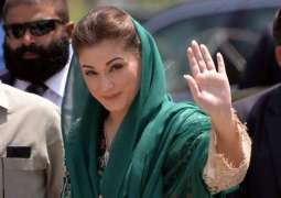 PTI to challenge Maryam Nawaz's appointment as PML-N vice president