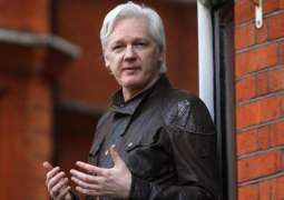 Assange's Ex-Guarantor Duchess of Beaufort Says to Continue Supporting WikiLeaks Founder