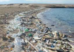 KP Government to take action against littering in rivers
