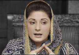 Maryam Nawaz criticized budget presented by PTI's government