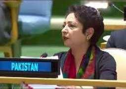 Pakistan calls for UN action to combat Islamophobia