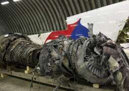 Russia to Keep Helping Probe on MH17 Crash to Determine Truth - Foreign Ministry