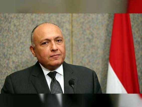 مصر تدعو إلى تنسيق الجهود لمنع نفاذ المقاتلين الفارين من المعارك في سوريا إلى دول المنطقة