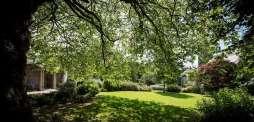 'Simply seeing green spaces' may help reduce cravings