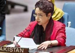Efforts are needed at international level to weed out organized crimes, terrorism: Dr Maleeha Lodhi