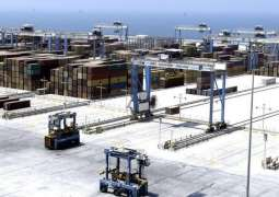 Value of exports through Abu Dhabi ports up, imports down in Q1 2019: SACD