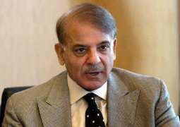 NAB being used as tool for political revenge, says Shehbaz Sharif