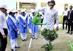 Clean and green pakistan campaign