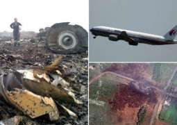Lawyer of MH17 Victims' Relatives Says Invited German Detective Resch to Testify at ECHR