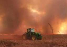 Record number burning in Brazil rainforest - space agency