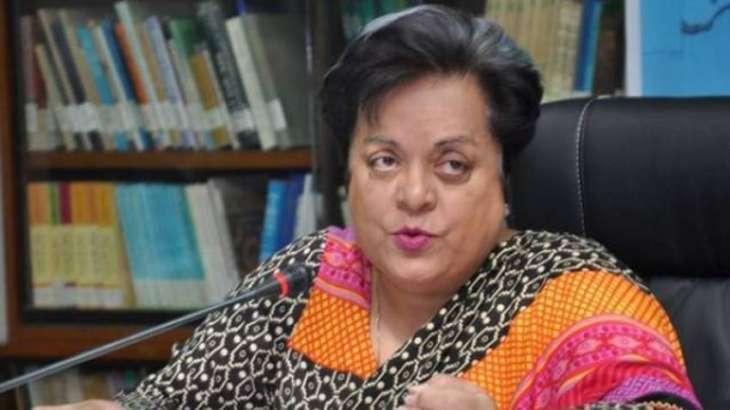 Mazari asks UNICEF to fire Indian actress from peace ambassador's slot