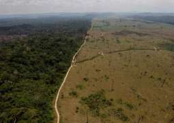 Brazil to Allocate Part of Returned Corrupt Funds to Preserve Amazon Rainforest - Reports