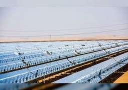 الإمارات تنشئ نظاما متطوراً للطاقة المتجددة في باربودا بعد تعرضها لإعصار مدمر