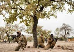 Niger Seeks Russia's Help in Fighting Terrorism - Foreign Minister