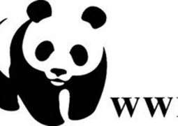EU and WWF to celebrate Climate Diplomacy Day