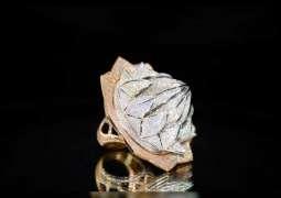 Guinness World Record diamond ring showcased in Sharjah