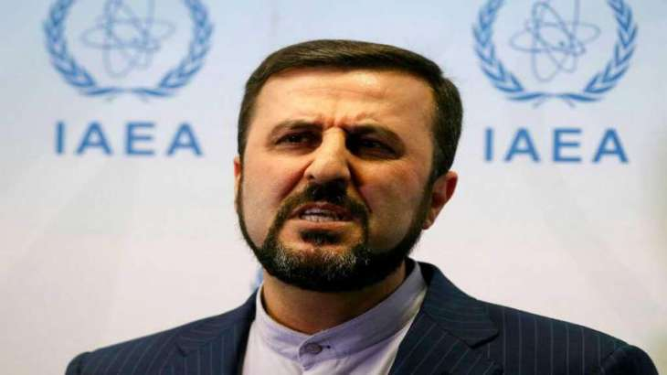 Iran Wants New IAEA Chief to Be Impartial, Preserve Agency's Credibility - Envoy