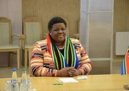 South Africa Hopes Sochi Summit Will Boost Energy, Infrastructure Cooperation - Ambassador