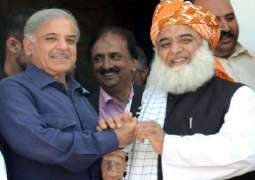 Shahbaz Sharif will  spearhead party in Maulana Fazlur Rehman anti government movement: Noor ul Hassan Tanvir MNA