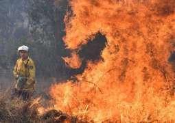 Australia bushfires: Dozens of houses destroyed or damaged