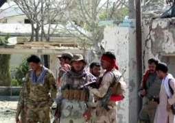 UPDATE - Taliban Claim Afghan Raid in Helmand Targeted Civilians, No Al-Qaeda Chiefs Among Victims
