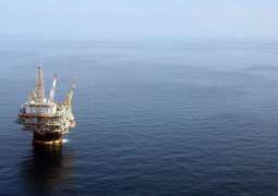 US Gulf of Mexico Oil Output Seen Staying At Record High Through 2020 -Energy Agency