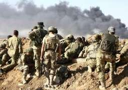 Merkel Calls on Turkey to Stop Anti-Kurdish Operation in Syria, Announces Arms Sales Ban