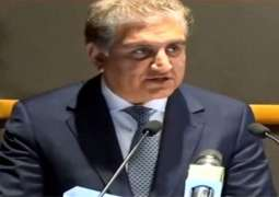 India's hegemonic pretensions present clear danger to regional stability: Foreign Minister Shah Mahmood Qureshi