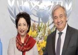 Maleeha Lodhi pays a farewell call on UN Secretary General