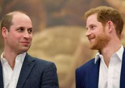 Prince Harry admits he and Prince William are  on different paths'