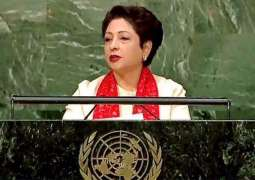 Grave humanitarian catastrophe brewing in Occupied Kashmir: Maleeha Lodhi