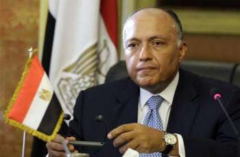 Russia-Africa Summit to Focus on All Topics of Mutual Interest - Egyptian Foreign Minister