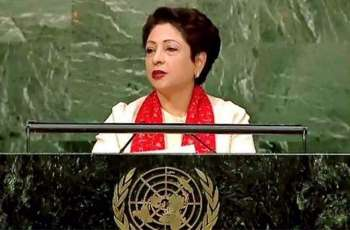 Grave humanitarian catastrophe brewing in Occupied Kashmir: Maleeha Lodhi